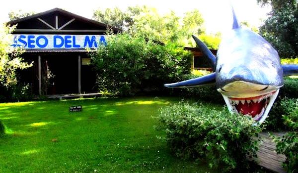 museo del mar maldonado