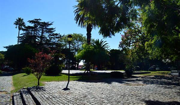 plaza mayor colonia