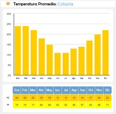 gráfica temperatura promedio en colonia del sacramento