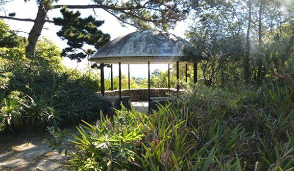 Arboretum Lussich en punta del este