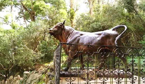 cerro del toro